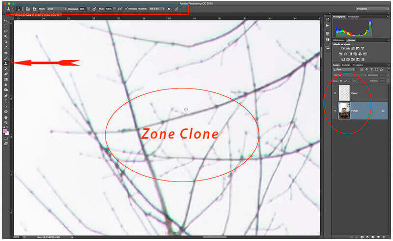 zone Clone